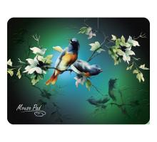 Коврик Dialog PM-H17 bird - черный с цветными птицами